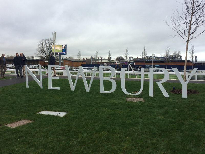 A different experience at the Races: Newbury Racecourse